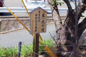 嵐 光の道撮影記念植樹