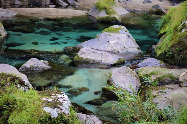 遊歩道から見た澄んだ川の流れ